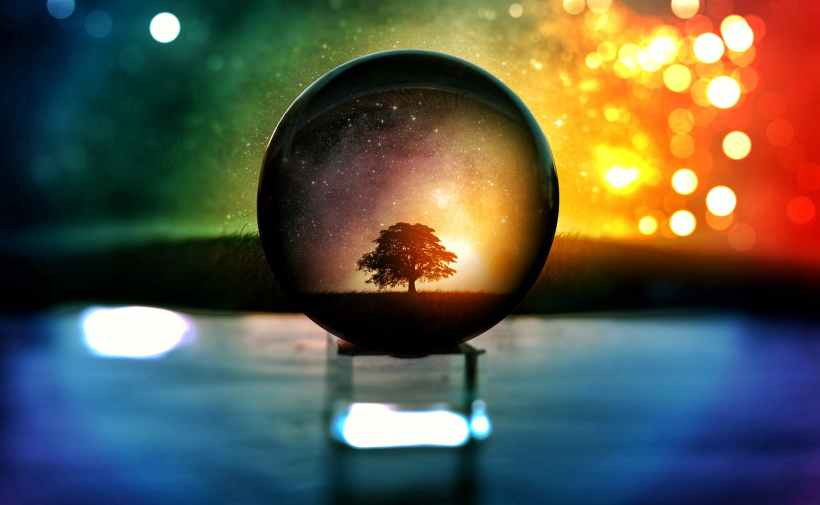 selective focus photography of water globe with tree illustration